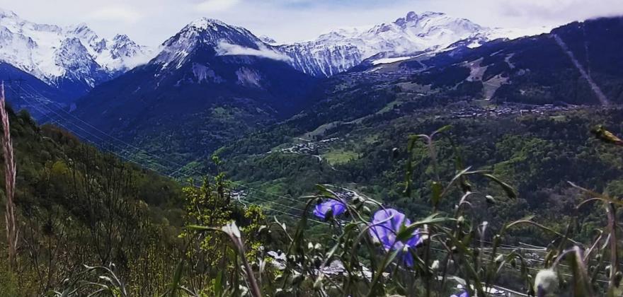 Balade en montagne histoire de vous faire découvrir la version verte et fleurie!