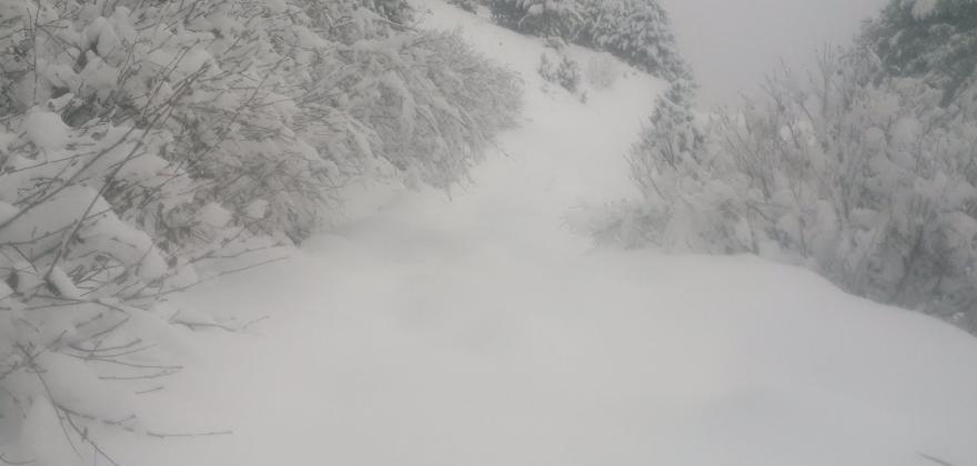 Premières Neiges en 2017
