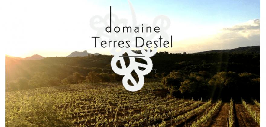 Dégustation des vins du domaine Terres Destel