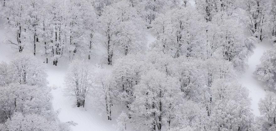 Teaser de l'hiver 2020/2021 Méribel